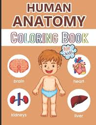 When your kids have finished coloring these free printable anatomy coloring pages online, cut out the diagrams and create an anatomy coloring book. Human Anatomy Coloring Book For Kids Over 40 Human Body Coloring Pages Great Gift For Boys