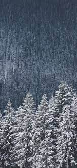 Free download Winter Forest Iphone X ...