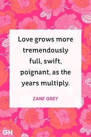 Quotes On Valentines Day Gorgeous 48 Cute Valentine's Day Quotes Best Romantic Quotes About