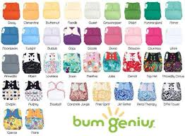 Bumgenius Colors And Prints Cloth Diapers Clothes Fashion