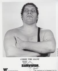 Wrestling Andre The Giant Coloring Pages Wwwtopsimagescom