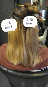 Does Shimmer Lights Lighten Hair You Must Pre Lighten Your Hair To Level 9 10 In Order To Get