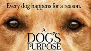 a dog s purpose book cover. Interesting Cover A Dogu0027s Purpose Book Trailer To Dog S Cover H