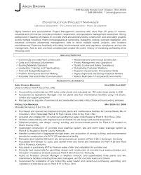 It Project Manager Sample Resume It Project Manager Resume Samples