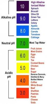 Pral Alkaline Chart Here Is A Picture Of The Pral Scale With Some Example Foods