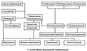 Реферат Принципы экологической безопасности com Банк  Принципы экологической безопасности