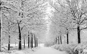 winter nature wallpaper high definition