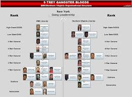 Dmv Organizational Chart 7 Fauquier Men Convicted On Federal Gang Charges