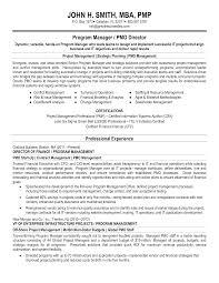 Free Program Manager Resume Templates At Allbusinesstemplates Com