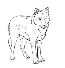 Wolf Coloring Pages To Print Wolf Coloring Pages Printable Page For