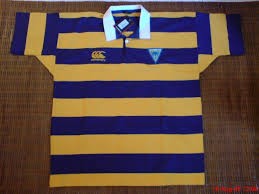 afza ccc collections sa0153028 m canterbury warrington wolves blue yellow striped rugby shirt