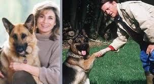 """Résultat de recherche d'images pour """"photo de mabrouk, chien de jean pierre hutin"""""""