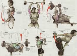 Pin On Mens Exercise Workout