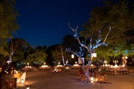 Sabi Sabi Private Game Reserve Safari Lodge Themed Dinner