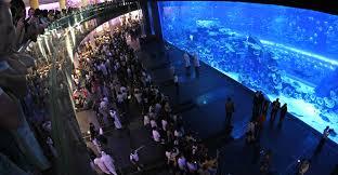 The Aquatic Design Centre Dubai Aquarium And Underwater Zoo The Dubai Mall