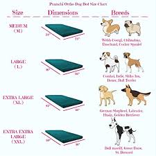 Pet Bed Size Chart Prazuchi Orthopedic And Waterproof Dog Bed For All Breeds Olive Green