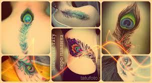 значение тату перо павлина смысл история и примеры готовых татуировок