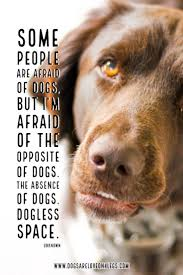 Dog Quote Some People Are Afraid Of Dogs Dog Dog Quotes