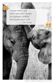 Top 25 Quotes About Elephants Hd Wallpapers