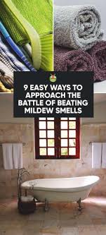 9 Easy Ways To Approach The Battle Of Beating Mildew Smells PIN 273x600
