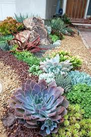outdoor cactus garden outdoor succulent garden ideas best succulent landscaping ideas on outdoor cactus small outdoor