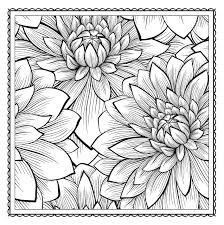 Blossom Magic Beautiful Floral Patterns Coloring