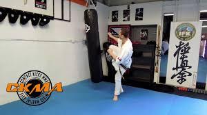 karate kyokushin heavy bag