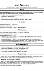 High School Resume Examples Formatted Templates Example Awesome How To Make A High School Resume