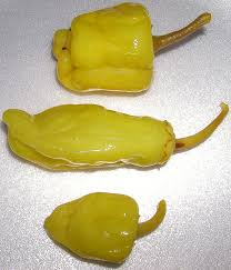 Friarelli pepper