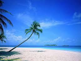 beautiful beach scenes.  Scenes Beautiful Serene Beach Scenes Throughout E