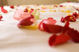 creative romantic ideas rose petals istock pushpictures