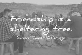 Photo Quotes About Friendship 100 Friendship Quotes You Need To See Before You Die 94