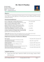 College Resume Format Delectable Fresher Lecturer Resume Brilliant Ideas Of Lecturer Resume Format
