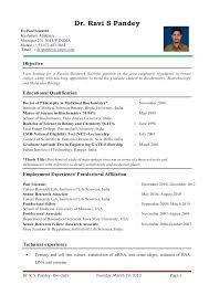 College Resume Format Delectable Fresher Lecturer Resume Brilliant Ideas Of Lecturer Resume Format