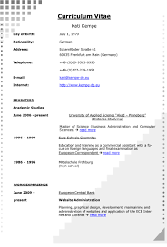Lovely Resume Writing Services Dallas Contemporary Entry Level