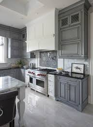 cabinet ideas grey kitchen cabinets what colour walls light with dark countertops white gray pictures full