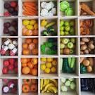 317Овощи и фрукты из пенопласта
