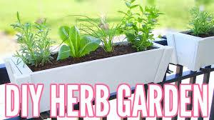 diy herb garden how to plant an herb garden great for apartments easy beginner gardening