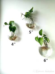 wall plant pots indoor wall mounted planters of 3 glass wall vase wall plant terrariums indoor wall plant pots