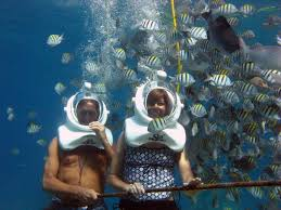 Real Underwater Hotel Sea Trek On The Floor Real Underwater Hotel R
