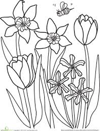 Small Picture Color the Spring Flowers Spring flowers Worksheets and Kindergarten