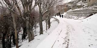 Freezing Temperature Freezing Temperature In Ladakh Prompts Winter Sports Tourism News Live