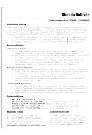 Summary Resume Template Delectable Experience Summary In Resume Examples Ability Summary Resume