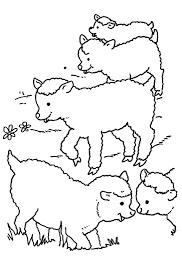 خروف العيد للتلوين صور خرفان لتلوين