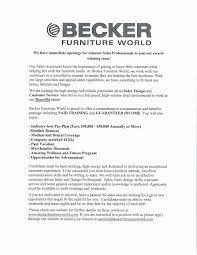 Merchandiser Resume Merchandiser Resume Sample Best Ideas Of Store Support Car Wash 92