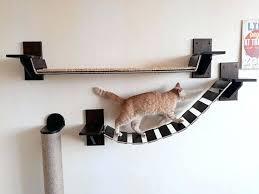 wall mounted cat furniture. Cat Furniture Wall Mounted Shelves Uk . Shelf Ideas Build