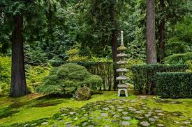 portland japanese garden reopens after
