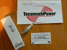 Sears Tecumseh 3 To 10 Hp Aluminum Engine Repair Service
