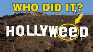 Image result for hollyweed sign