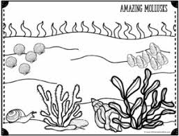 See more ideas about coloring pages, ocean coloring pages, coloring books. Free Ocean Coloring Pages